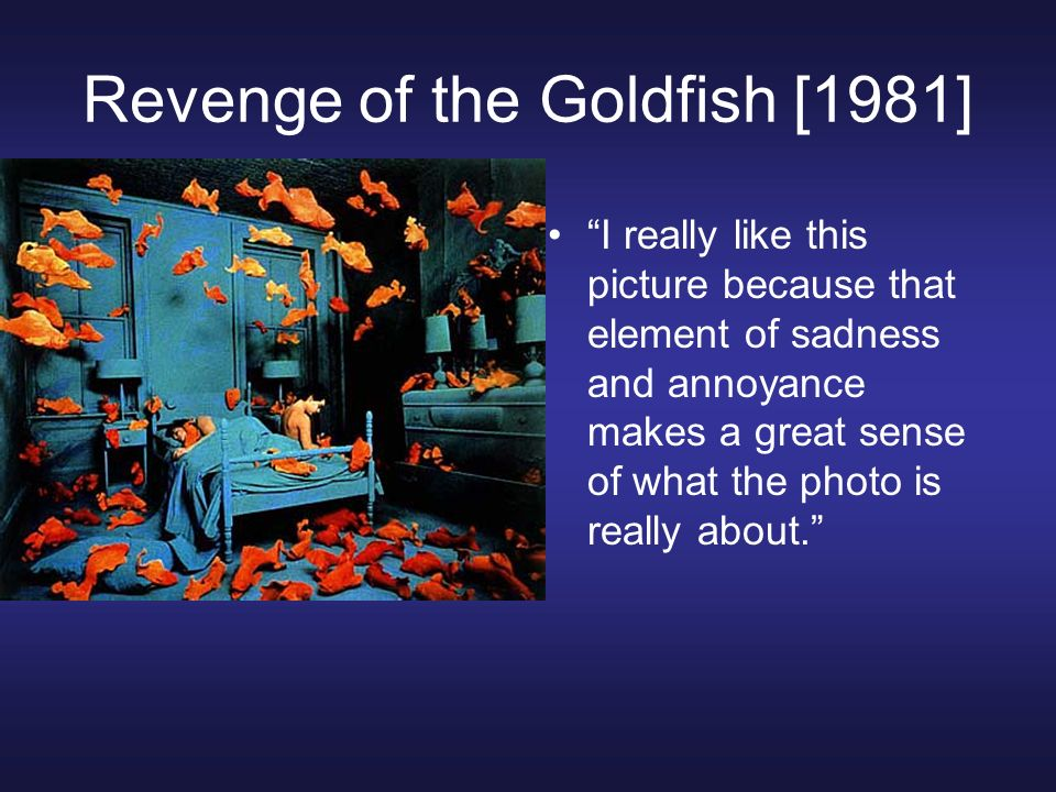 Revenge of the Goldfish [1981]